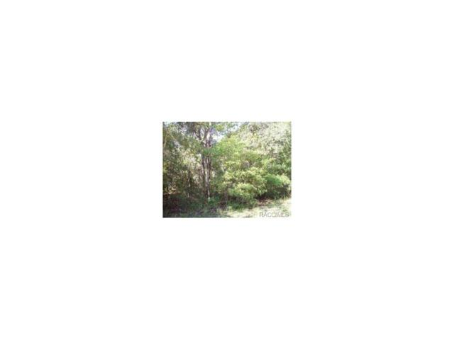 2148 E Celina Street, Inverness, FL 34453 (MLS #757860) :: Plantation Realty Inc.