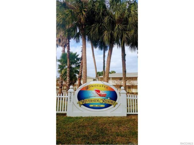5291 S Cherokee Way, Homosassa, FL 34448 (MLS #757929) :: Plantation Realty Inc.