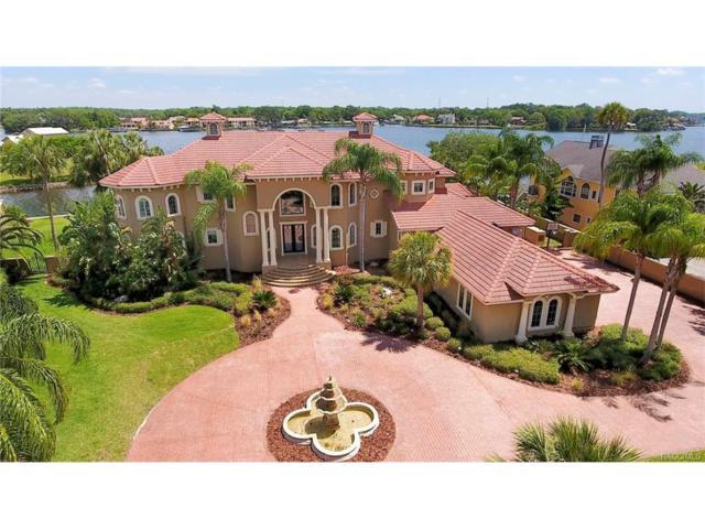 2115 N Watersedge Drive, Crystal River, FL 34429 (MLS #758047) :: Plantation Realty Inc.