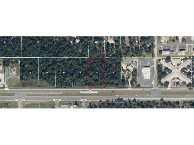 2489 W Norvell Bryant Highway, Lecanto, FL 34461 (MLS #758065) :: Plantation Realty Inc.