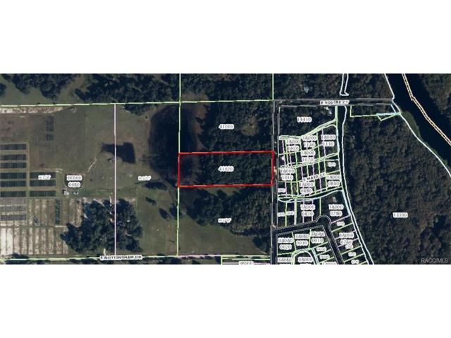 596 N Little John Avenue, Inverness, FL 34450 (MLS #760282) :: Plantation Realty Inc.