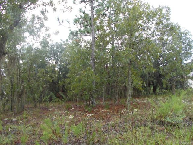 3376 N Eisenhower Avenue, Hernando, FL 34442 (MLS #760327) :: Plantation Realty Inc.