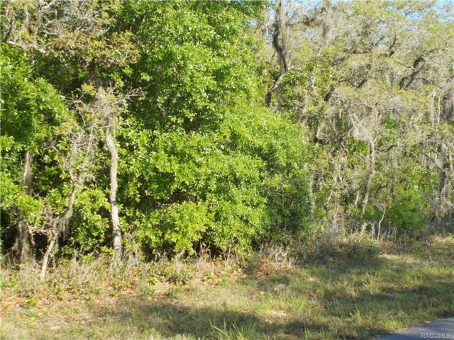 1238 E Cleveland Street, Hernando, FL 34442 (MLS #760339) :: Plantation Realty Inc.