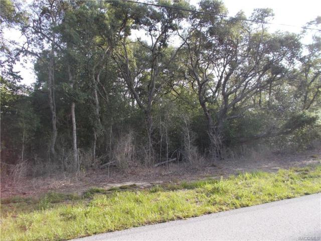 1059 E Bismark Street, Hernando, FL 34442 (MLS #760375) :: Plantation Realty Inc.
