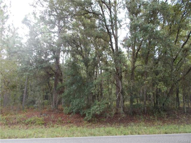 3155 N Tyrone Avenue, Hernando, FL 34442 (MLS #760411) :: Plantation Realty Inc.