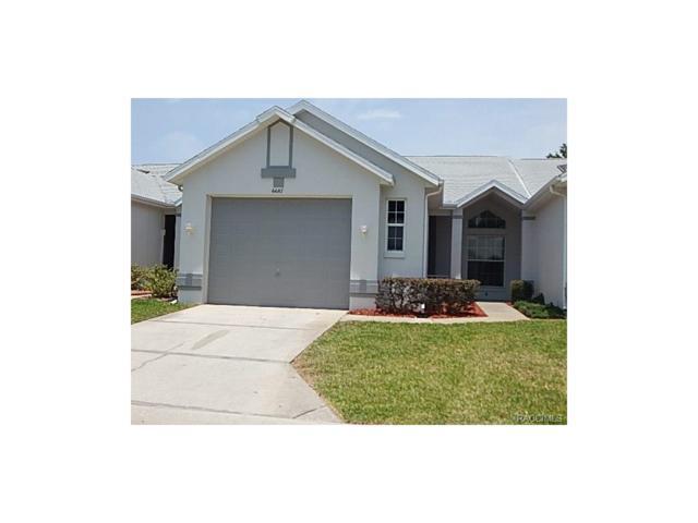 6687 E Kingsbury Lane, Inverness, FL 34452 (MLS #760435) :: Plantation Realty Inc.