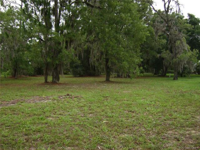 6187 N Whispering Oak Loop, Beverly Hills, FL 34465 (MLS #760541) :: Plantation Realty Inc.