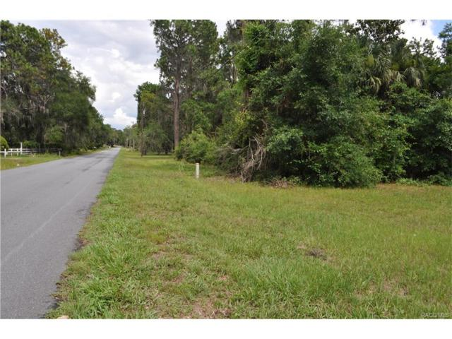 10680 SE 201st Street, Inglis, FL 34449 (MLS #760578) :: Plantation Realty Inc.