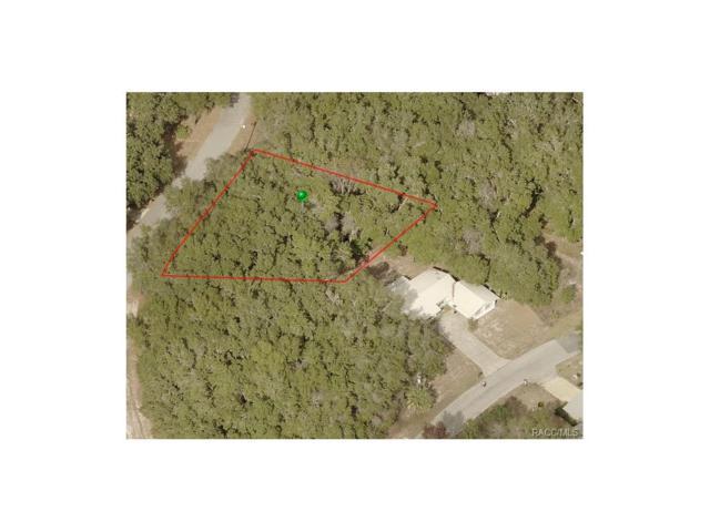 9255 E Mistwood, Inverness, FL 34450 (MLS #760694) :: Plantation Realty Inc.