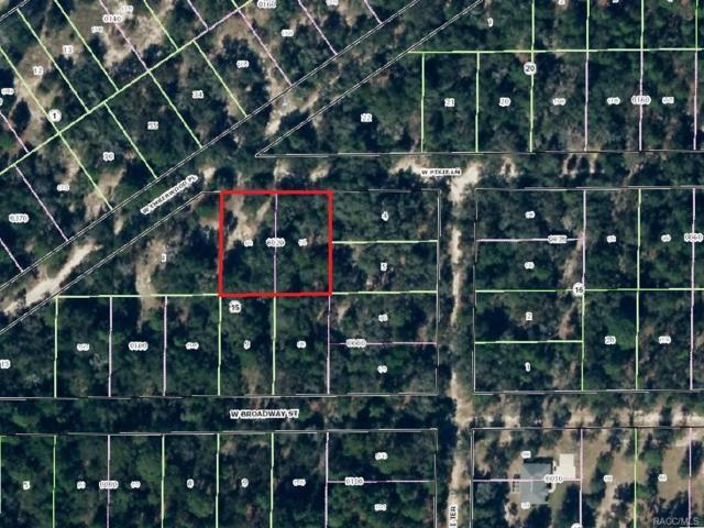 7570 W Pixie Lane, Dunnellon, FL 34433 (MLS #761047) :: Plantation Realty Inc.