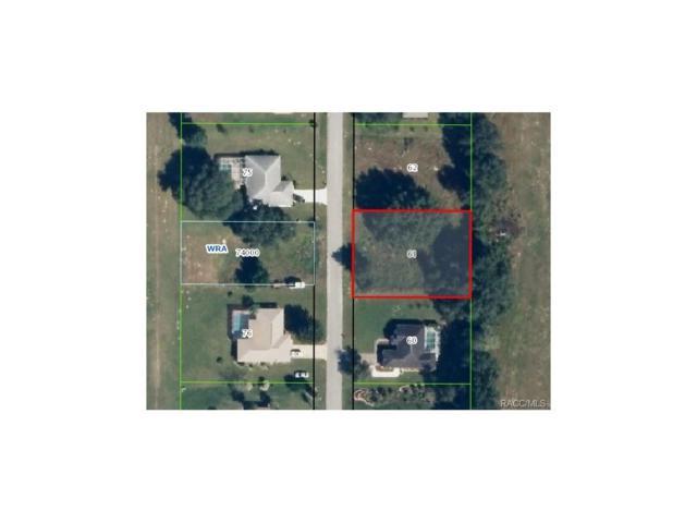 1135 N Foxrun Terrace, Inverness, FL 34453 (MLS #761190) :: Plantation Realty Inc.