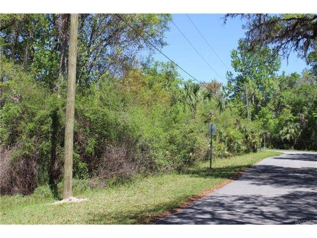 8504 & 8488 E Henderson Trail, Inverness, FL 34453 (MLS #761230) :: Plantation Realty Inc.