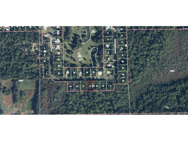 135 N Country Club Drive, Crystal River, FL 34429 (MLS #761253) :: Plantation Realty Inc.