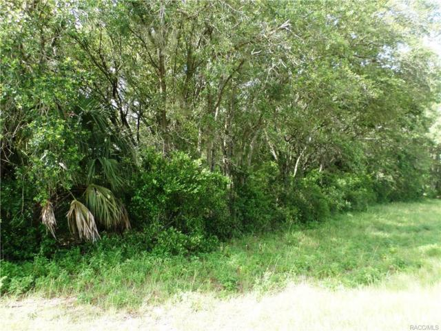 00 E Pennsylvania Avenue, Dunnellon, FL 34432 (MLS #761358) :: Plantation Realty Inc.