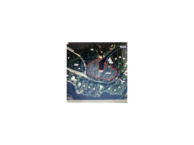 14555 W Black Creek Drive, Crystal River, FL 34429 (MLS #761464) :: Plantation Realty Inc.
