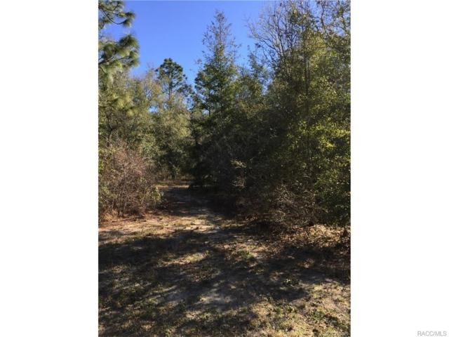 2349 N Pine Cone Avenue, Lecanto, FL 34461 (MLS #762327) :: Plantation Realty Inc.