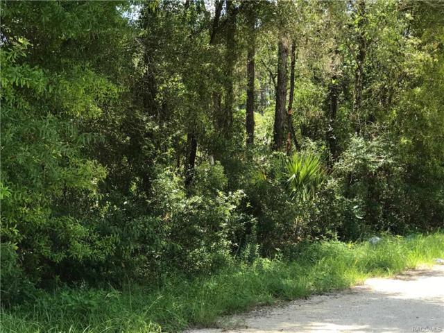 10194 W Sandra Street, Crystal River, FL 34428 (MLS #762336) :: Plantation Realty Inc.