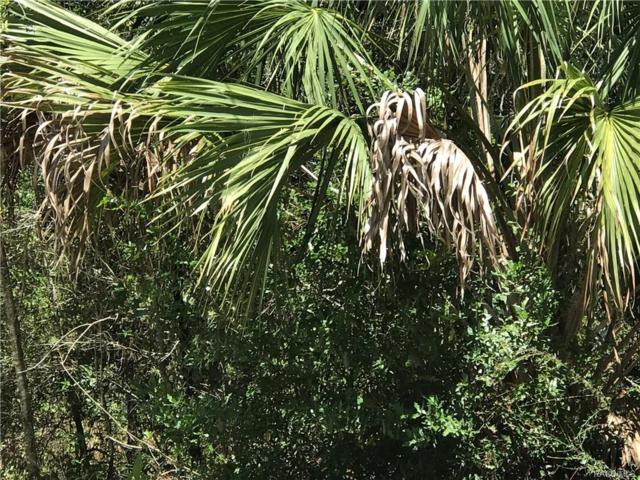 8391 N Firefly Terrace, Crystal River, FL 34428 (MLS #762353) :: Plantation Realty Inc.