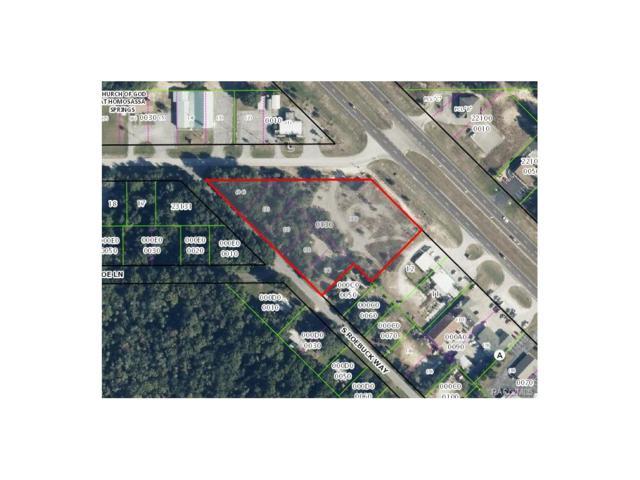 8270 W Bradshaw Boulevard, Homosassa, FL 34448 (MLS #762379) :: Plantation Realty Inc.