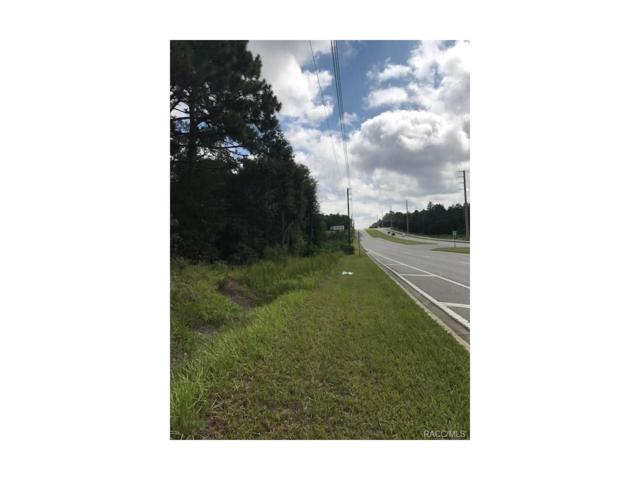 1519 E Norvell Bryant Highway, Hernando, FL 34442 (MLS #762456) :: Plantation Realty Inc.