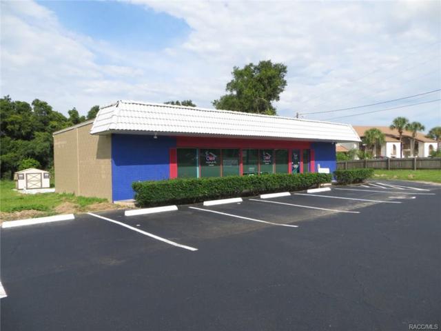 625 S Us Highway 41, Inverness, FL 34450 (MLS #762490) :: Plantation Realty Inc.