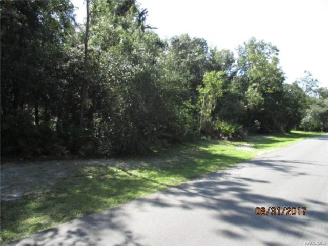 439 N Griffith Avenue, Crystal River, FL 34429 (MLS #762533) :: Plantation Realty Inc.