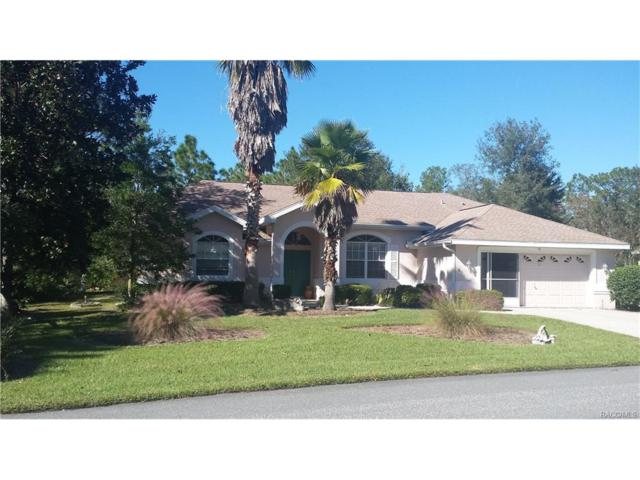 50 Sweetgum Court N, Homosassa, FL 34446 (MLS #762730) :: Plantation Realty Inc.