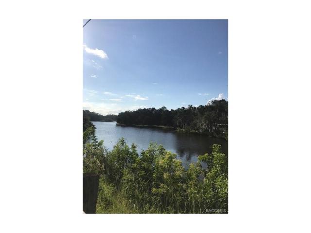 1312 S Estuary Drive N, Crystal River, FL 34429 (MLS #762859) :: Plantation Realty Inc.