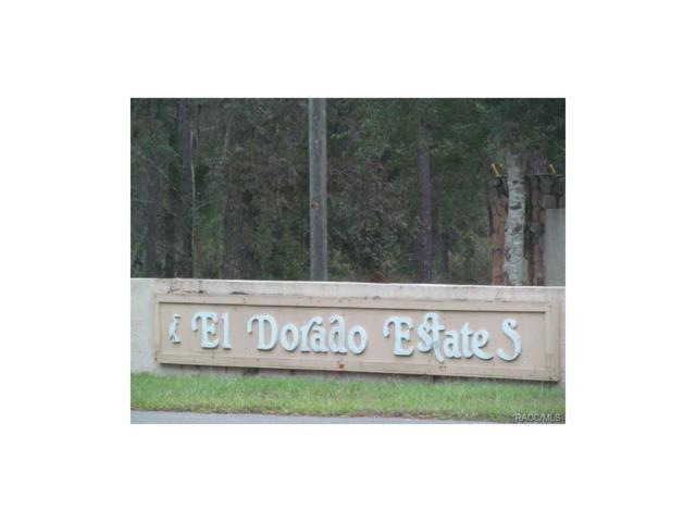 6020 S Coronado Terrace, Lecanto, FL 34461 (MLS #762935) :: Plantation Realty Inc.
