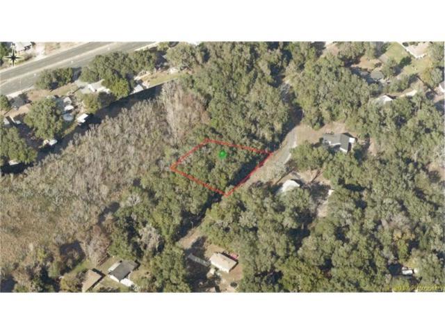 9117 & 9123 E Royal Palm Drive, Inverness, FL 34450 (MLS #762936) :: Plantation Realty Inc.