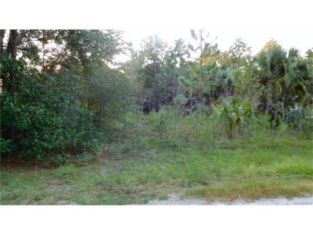 8654 N Fauci Point, Crystal River, FL 34428 (MLS #763010) :: Plantation Realty Inc.