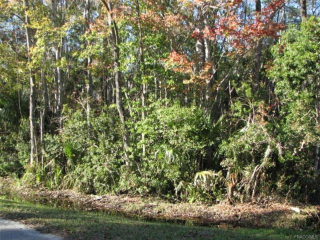 0 NE 5th Avenue, Crystal River, FL 34428 (MLS #763061) :: Pristine Properties
