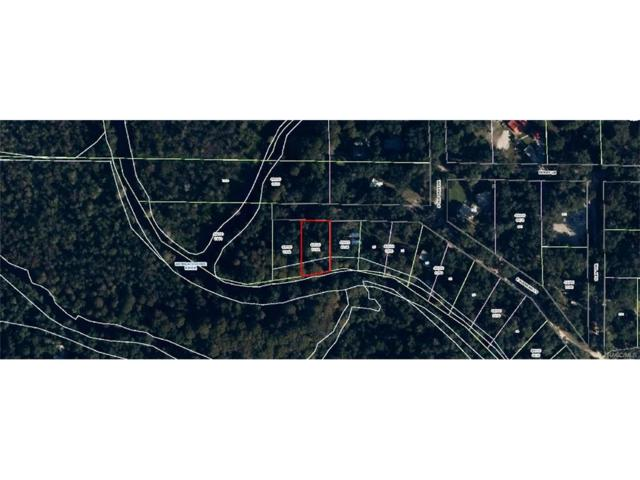 12128 E Supreme Court, Floral City, FL 34436 (MLS #763089) :: Plantation Realty Inc.