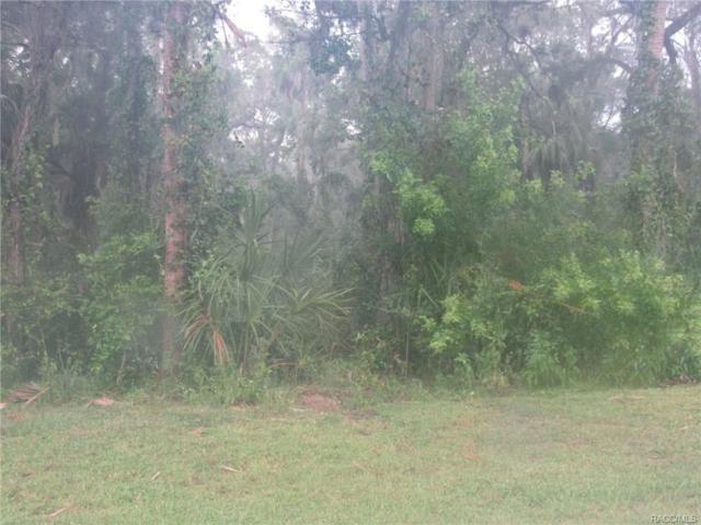6859 S Holly Oak Point, Homosassa, FL 34448 (MLS #764264) :: Plantation Realty Inc.