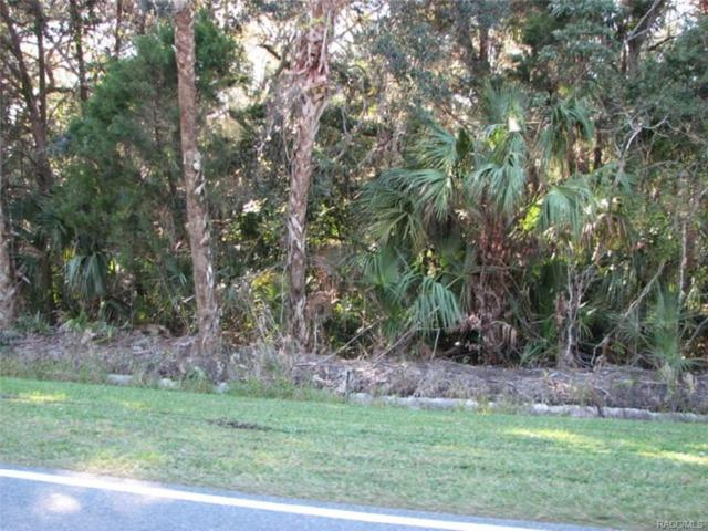0 NW 1st Street, Crystal River, FL 34429 (MLS #764316) :: Plantation Realty Inc.