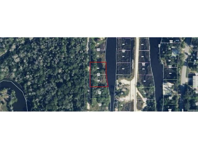 2153 S Panther Point, Crystal River, FL 34429 (MLS #764318) :: Plantation Realty Inc.