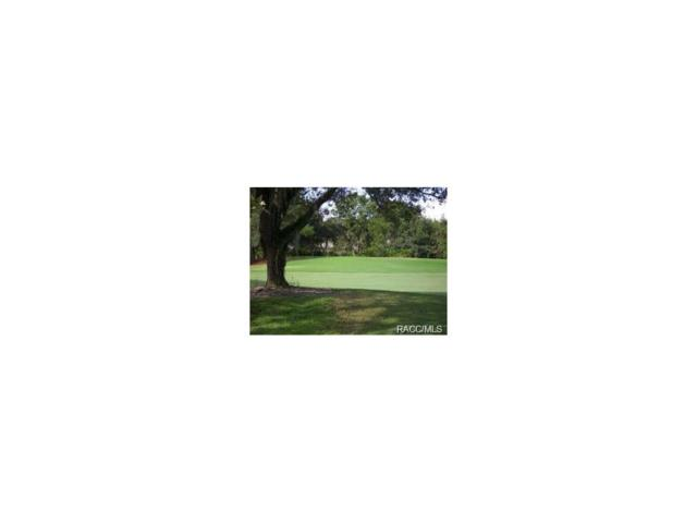 3194 N Caves Valley Path, Lecanto, FL 34461 (MLS #764433) :: Plantation Realty Inc.