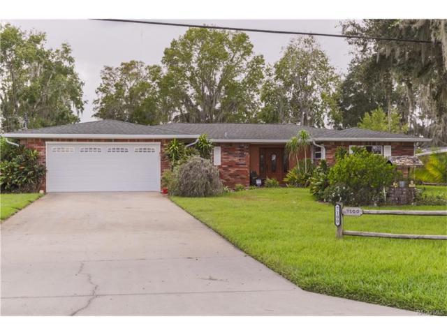 7100 South Duval Island Drive, Floral City, FL 34436 (MLS #764494) :: Plantation Realty Inc.