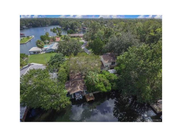 4216 S Marva Terrace, Homosassa, FL 34446 (MLS #764517) :: Plantation Realty Inc.