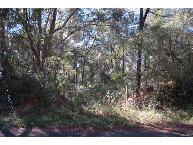 2874 E Oakton Street, Hernando, FL 34442 (MLS #764569) :: Plantation Realty Inc.