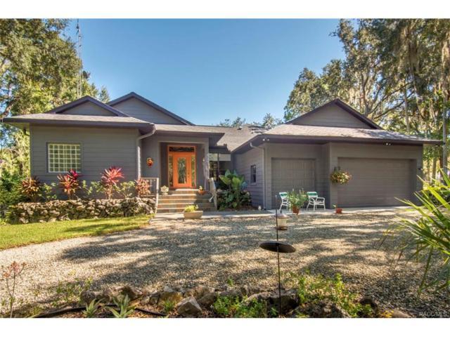 11405 N Honey Jordan Point, Inglis, FL 34449 (MLS #764646) :: Plantation Realty Inc.