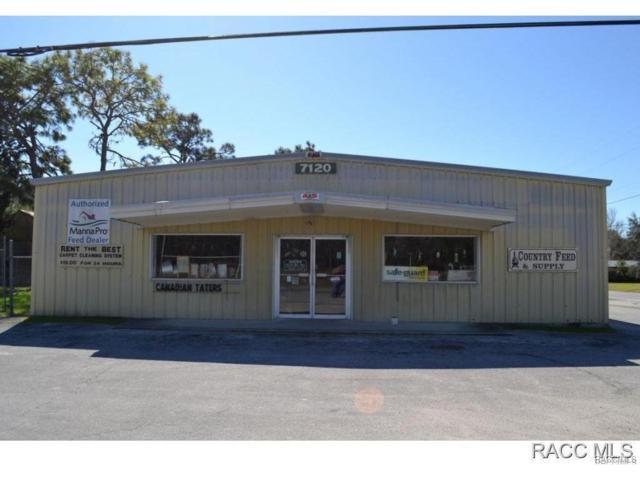 7120 W Grover Cleveland Boulevard, Homosassa, FL 34446 (MLS #764658) :: Plantation Realty Inc.