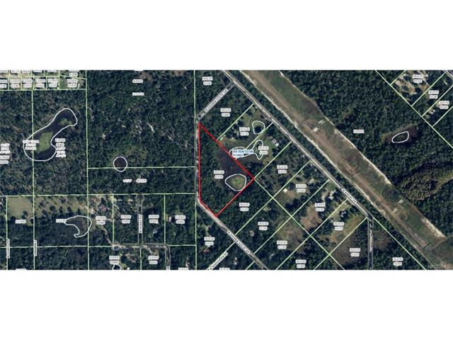 5585 N Sierra Vista Drive, Crystal River, FL 34428 (MLS #764681) :: Plantation Realty Inc.