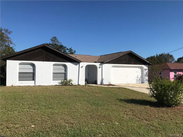 12391 Hanley Drive, Spring Hill, FL 34608 (MLS #764715) :: Plantation Realty Inc.