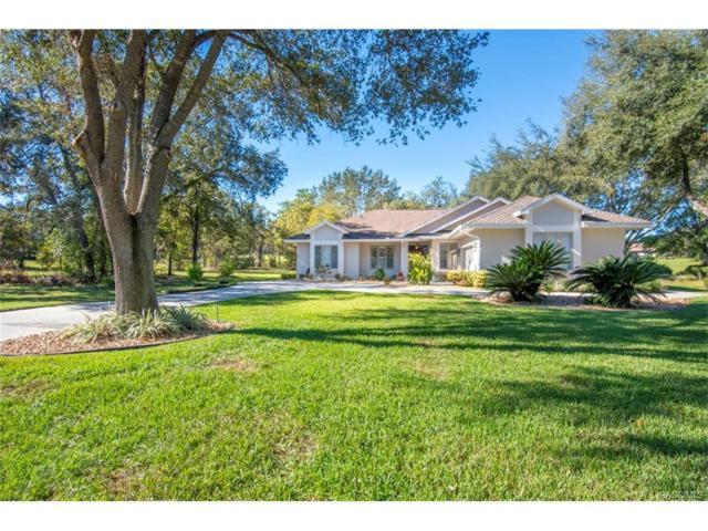 3180 N Pinelake Village Point, Lecanto, FL 34461 (MLS #764730) :: Plantation Realty Inc.