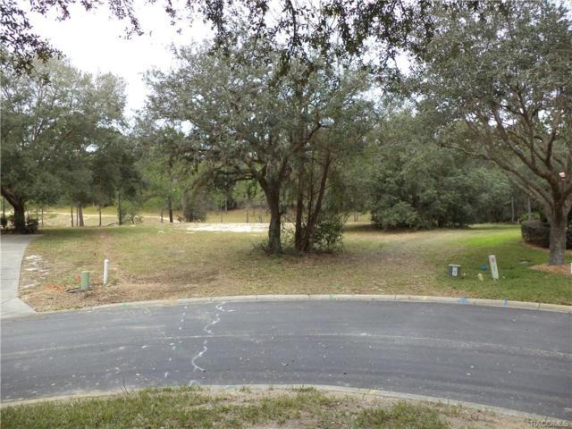 3700 W Treyburn Path, Lecanto, FL 34461 (MLS #764733) :: Plantation Realty Inc.