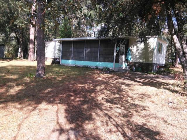 8045 Peacock Lane, Floral City, FL 34436 (MLS #765842) :: Plantation Realty Inc.