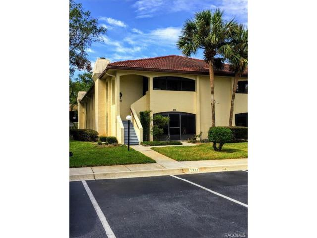 2334 Forest Drive 7A, Inverness, FL 34453 (MLS #765990) :: Plantation Realty Inc.