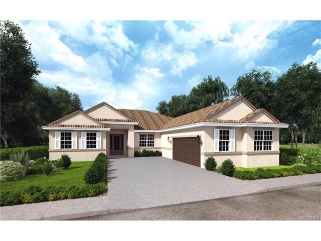 2717 N Carnoustie Loop, Lecanto, FL 34461 (MLS #766041) :: Plantation Realty Inc.