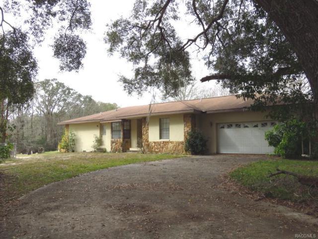 10501 E Turtle Lane, Floral City, FL 34436 (MLS #766113) :: Pristine Properties